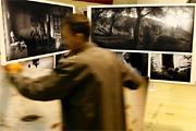 Taroltak a magyarok a World Press Photo-n