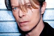 David Bowie nevét viseli egy új pókfaj