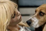 Brigitte Bardot születésnapi kívánsága