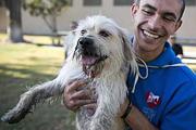Terápiás kutya a dühöngő rabok ellen