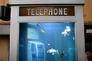 Újrahasznosított telefonfülkék