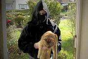 Ninja védi egy angol város lakóit