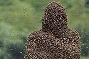 Méhekkel betakarva