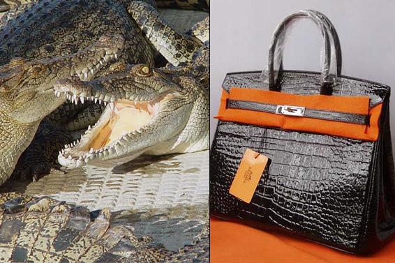 www.eryptick.net, www.china-replica-handbag.com